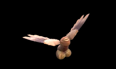 Cacete voador agora paira sobre a Rede Globo